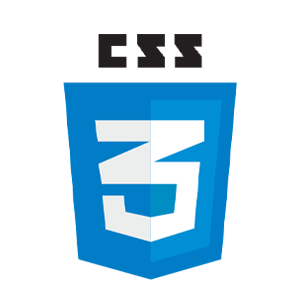 CSS Private Tutor