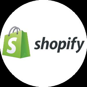 Shopify Private Tutor
